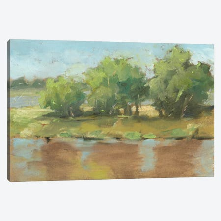 Muddy River II Canvas Print #EHA274} by Ethan Harper Canvas Artwork