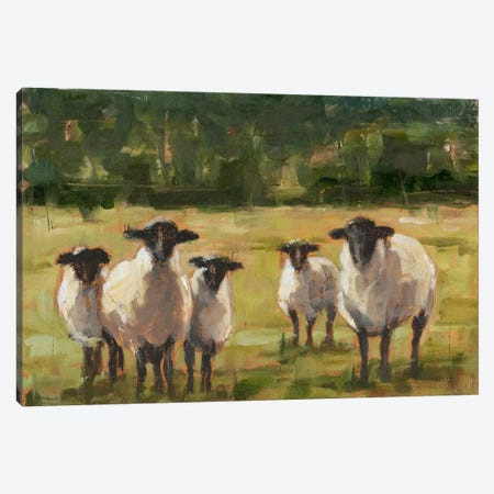 Sheep Family I Canvas Print #EHA282} by Ethan Harper Canvas Wall Art