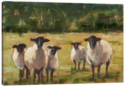 Sheep Family I Canvas Art Print