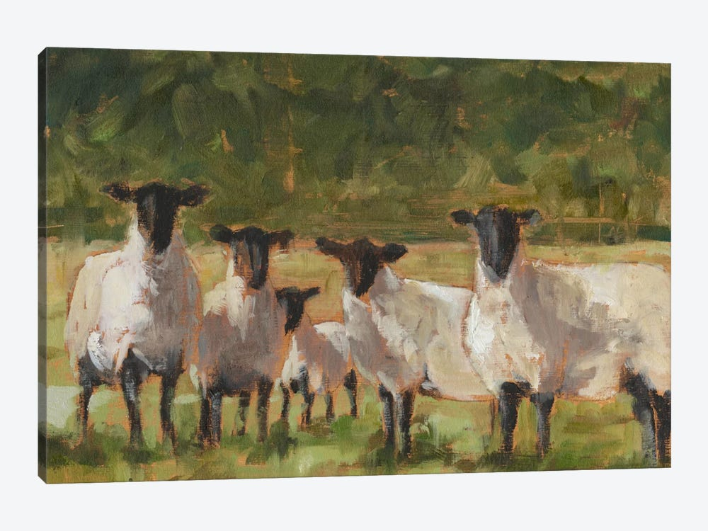 Sheep Family II by Ethan Harper 1-piece Art Print