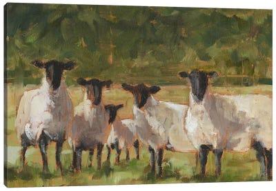 Sheep Family II Canvas Art Print