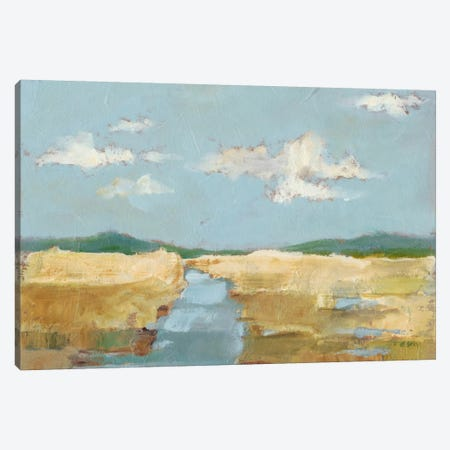 Summer Wetland II Canvas Print #EHA285} by Ethan Harper Art Print