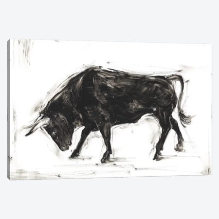 Toro I Canvas Print #EHA292} by Ethan Harper Canvas Print