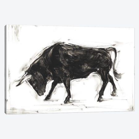 Toro I Canvas Print #EHA292} by Ethan Harper Canvas Print