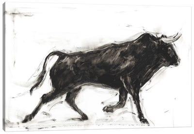 Toro II Canvas Art Print