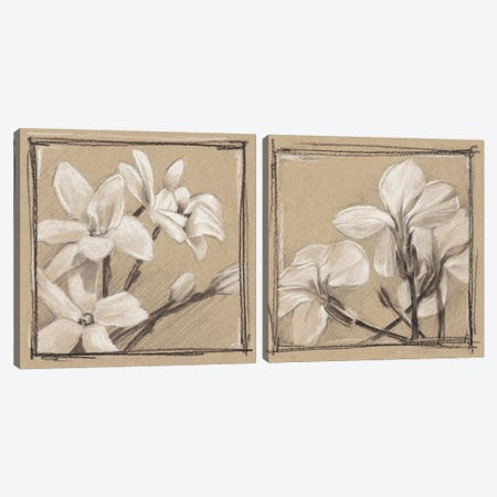 White Floral Study Diptych Canvas Print Set #EHA2HSET004} by Ethan Harper Canvas Print