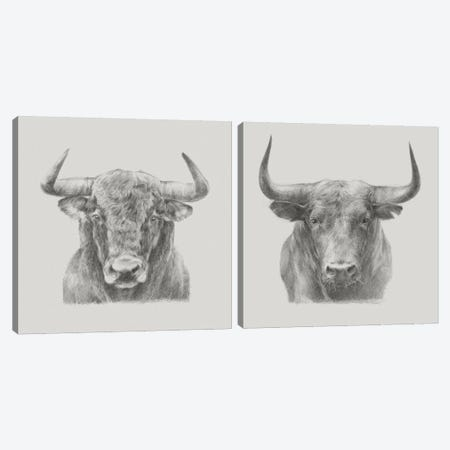 Bull Diptych Canvas Print Set #EHA2HSET007} by Ethan Harper Canvas Art Print