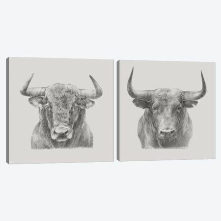 Bull Diptych Canvas Print Set #EHA2HSET007} by Ethan Harper Canvas Art Print