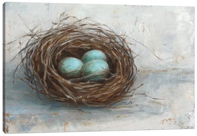 Rustic Bird Nest I Canvas Art Print