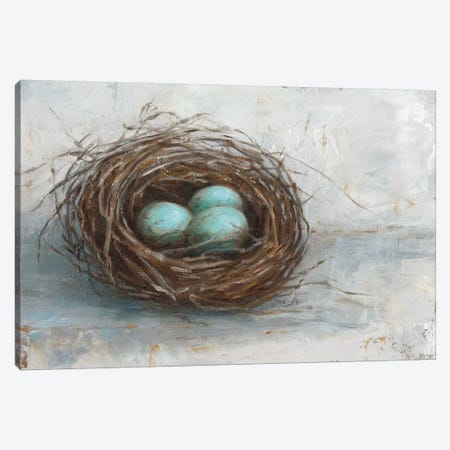 Rustic Bird Nest I 3-Piece Canvas #EHA322} by Ethan Harper Canvas Art Print
