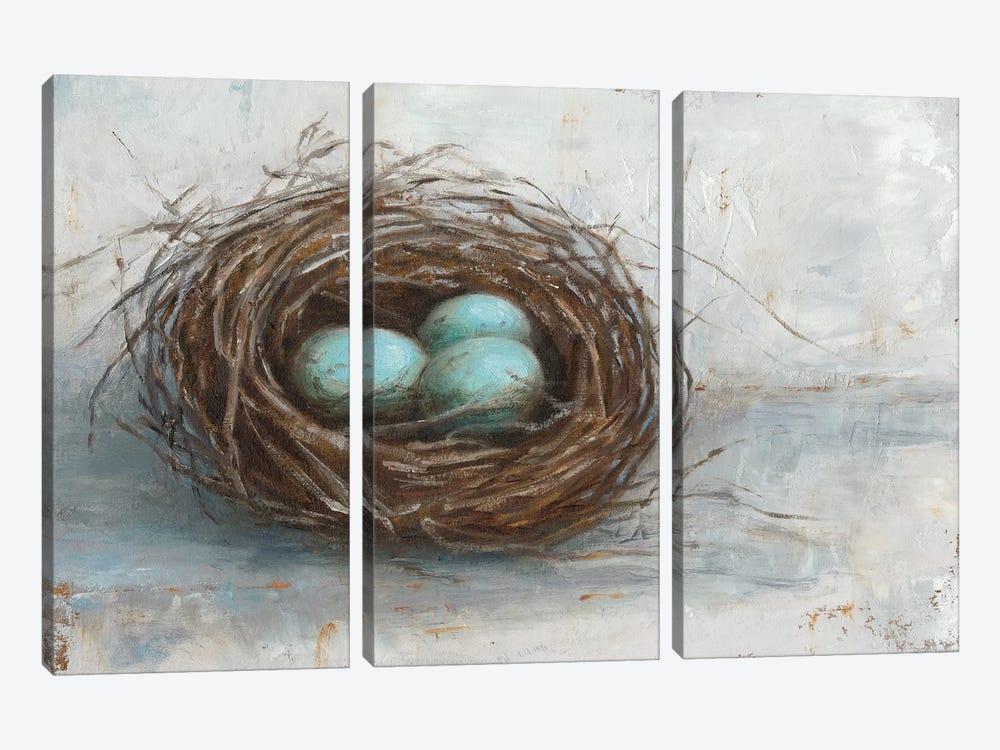 Rustic Bird Nest I by Ethan Harper 3-piece Canvas Art Print