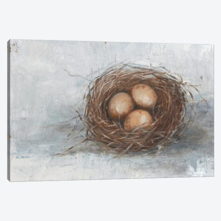 Rustic Bird Nest II Canvas Print #EHA323} by Ethan Harper Canvas Art Print