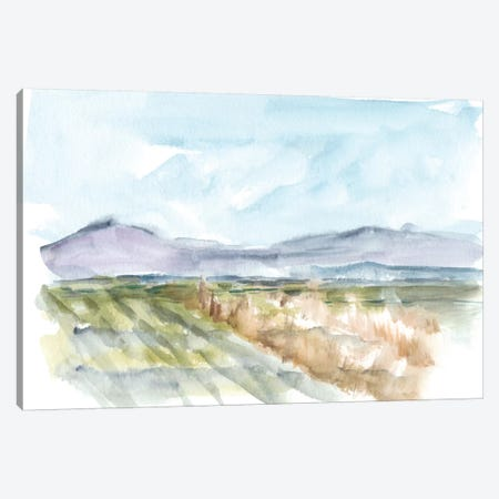 Vibrant Watercolor IV Canvas Print #EHA333} by Ethan Harper Canvas Artwork