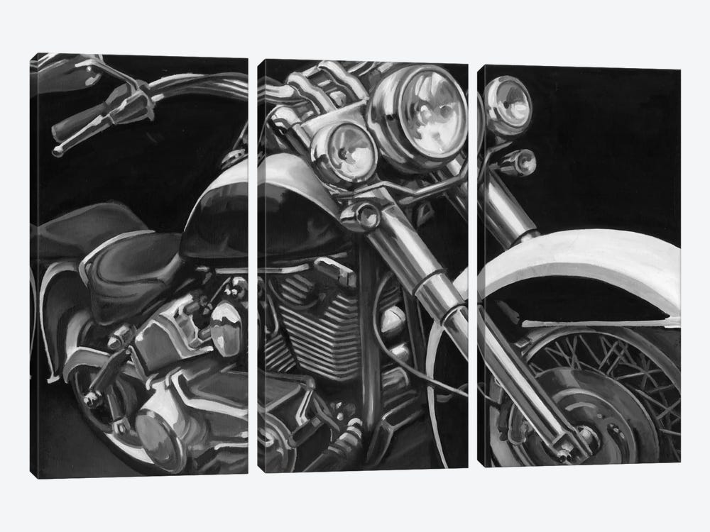 Classic Hogs I by Ethan Harper 3-piece Canvas Artwork