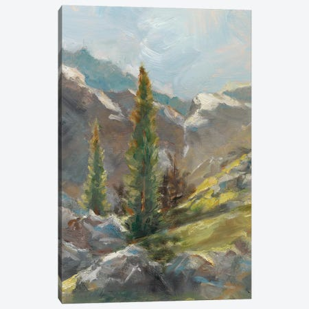 Rocky Hillside I Canvas Print #EHA371} by Ethan Harper Canvas Wall Art