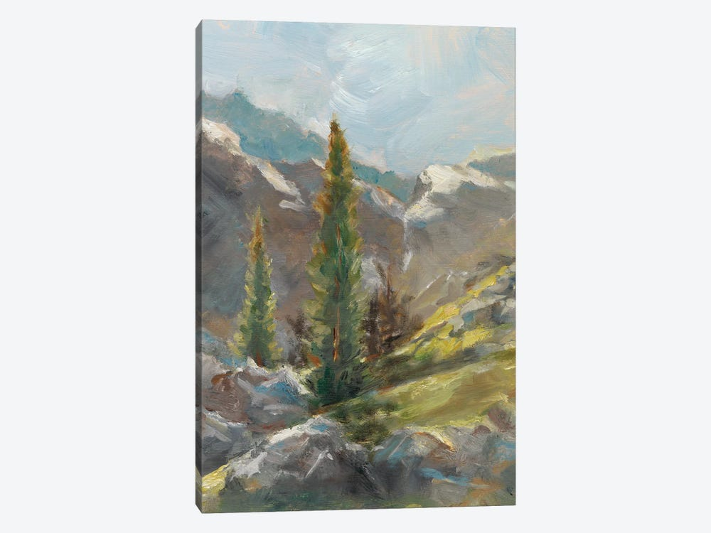 Rocky Hillside I by Ethan Harper 1-piece Canvas Art Print