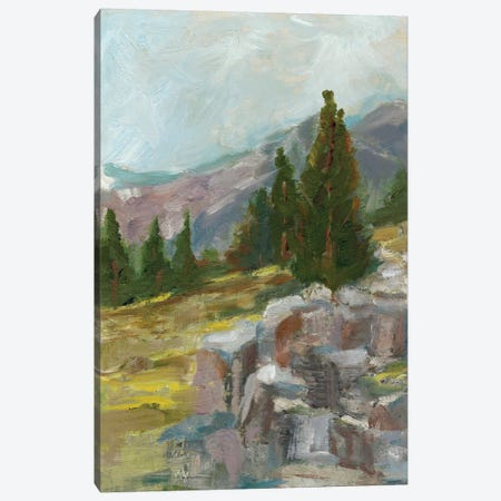 Rocky Hillside II Canvas Print #EHA372} by Ethan Harper Canvas Artwork