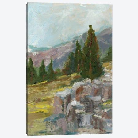 Rocky Hillside II Canvas Print #EHA372} by Ethan Harper Canvas Artwork