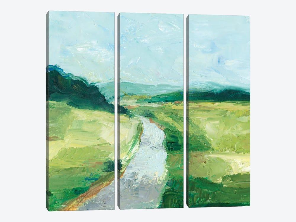 Rural Path II by Ethan Harper 3-piece Canvas Art
