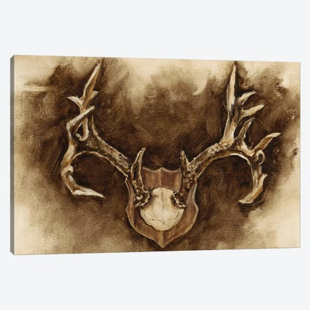 Rustic Antler Mount I Canvas Print #EHA375} by Ethan Harper Canvas Print