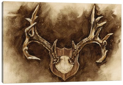 Rustic Antler Mount I Canvas Art Print
