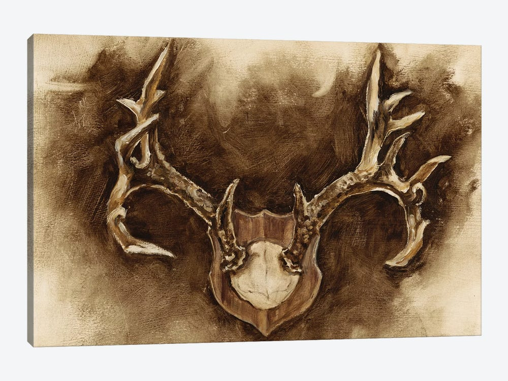 Rustic Antler Mount I by Ethan Harper 1-piece Canvas Print