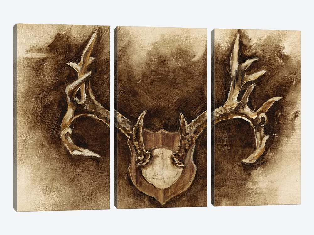 Rustic Antler Mount I by Ethan Harper 3-piece Art Print