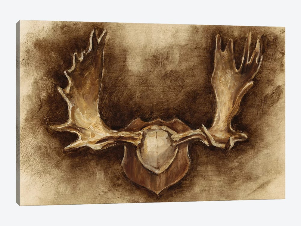 Rustic Antler Mount II by Ethan Harper 1-piece Canvas Wall Art