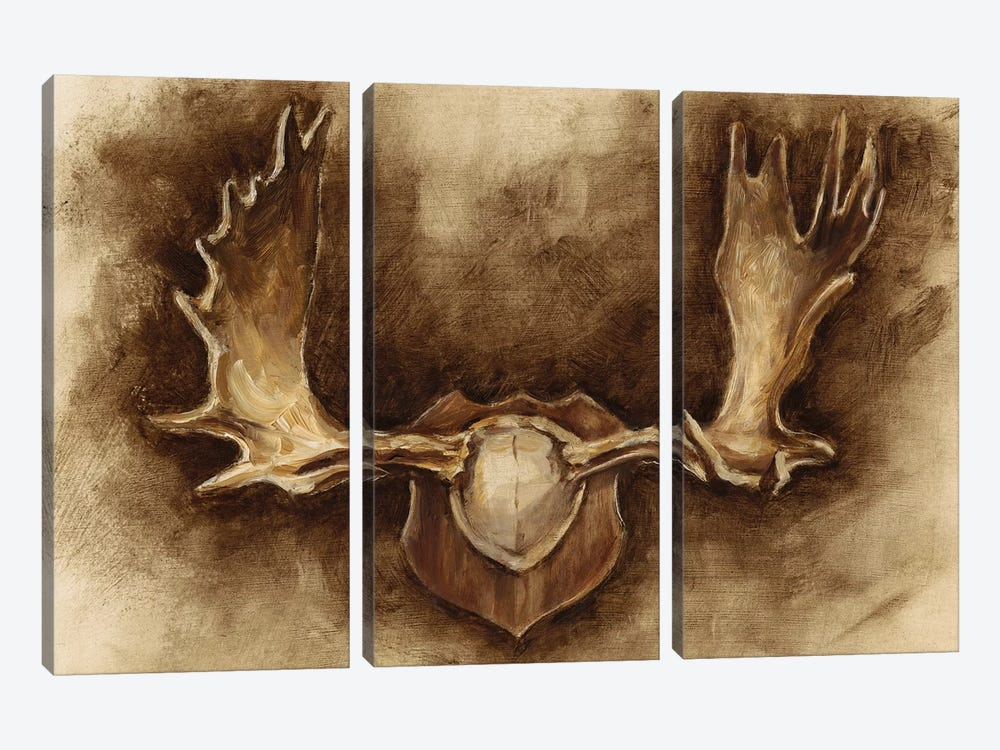 Rustic Antler Mount II by Ethan Harper 3-piece Canvas Artwork