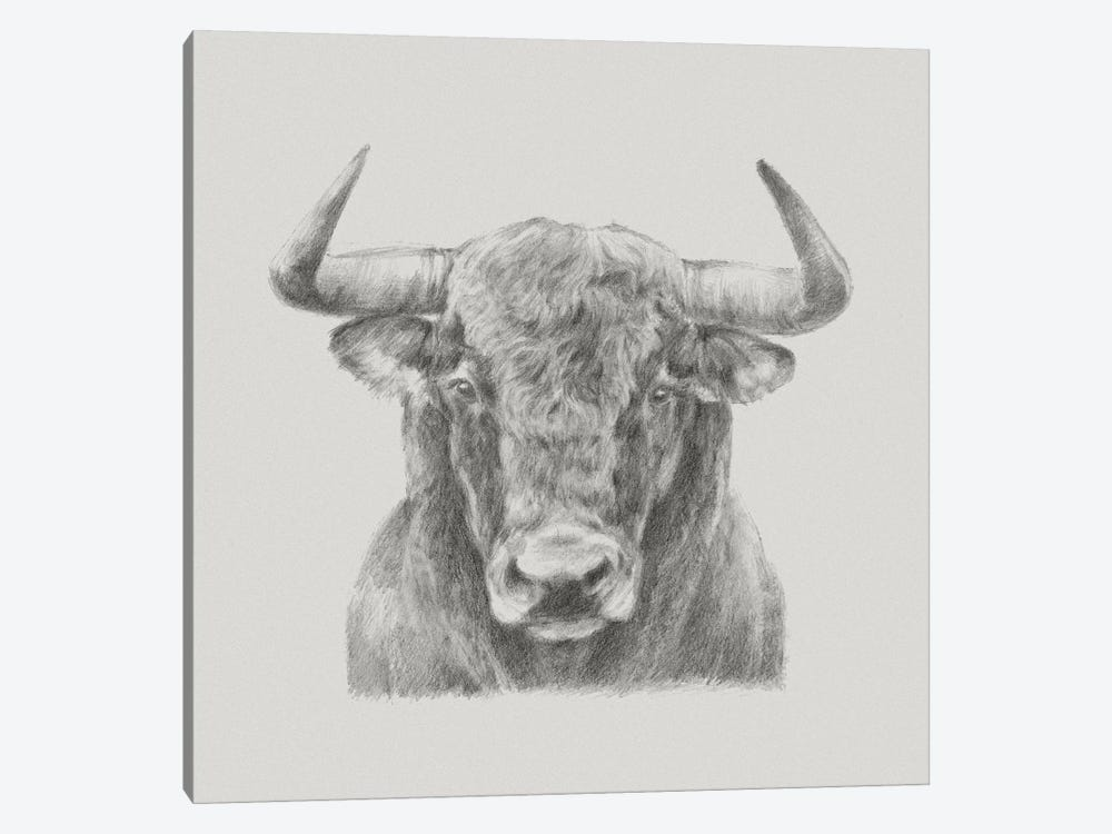 Black & White Bull by Ethan Harper 1-piece Canvas Art