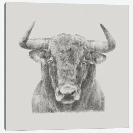 Black & White Bull Canvas Print #EHA394} by Ethan Harper Art Print