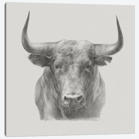 Black Bull Canvas Print #EHA395} by Ethan Harper Art Print