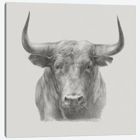 Black Bull Canvas Print #EHA395} by Ethan Harper Art Print