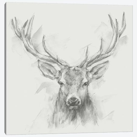 Contemporary Elk Sketch I Canvas Print #EHA398} by Ethan Harper Canvas Artwork