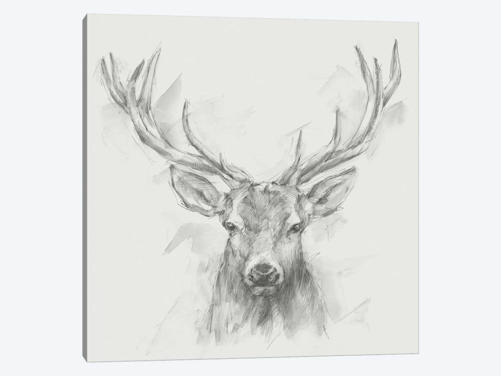 Contemporary Elk Sketch I by Ethan Harper 1-piece Canvas Art