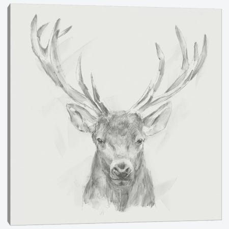 Contemporary Elk Sketch II Canvas Print #EHA399} by Ethan Harper Canvas Wall Art