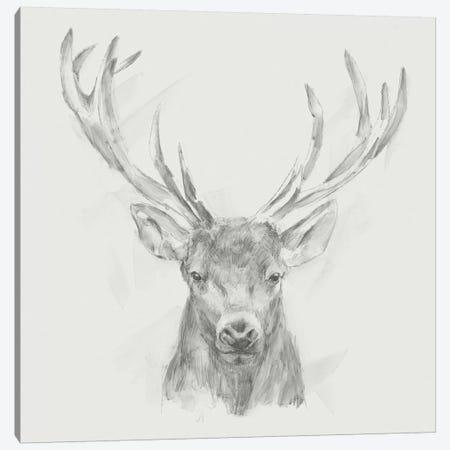 Contemporary Elk Sketch II Canvas Print #EHA399} by Ethan Harper Canvas Wall Art