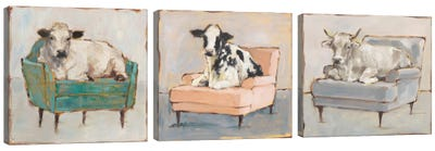 Moo-ving In Triptych Canvas Art Print