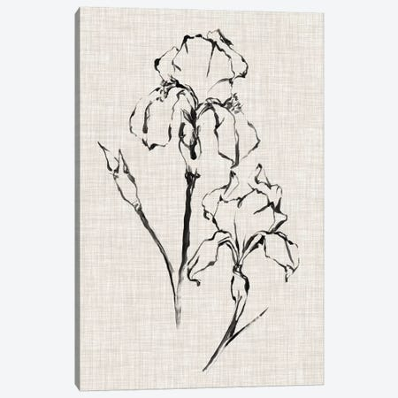 Floral Ink Study II Canvas Print #EHA413} by Ethan Harper Canvas Print