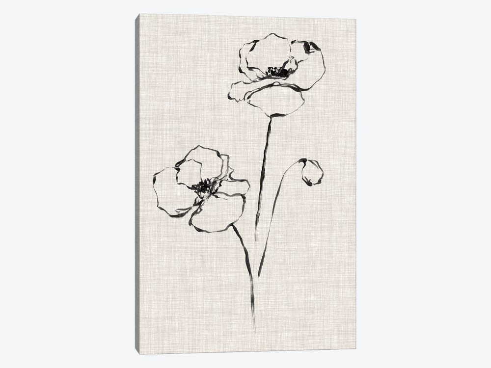 Floral Ink Study III by Ethan Harper 1-piece Canvas Art Print