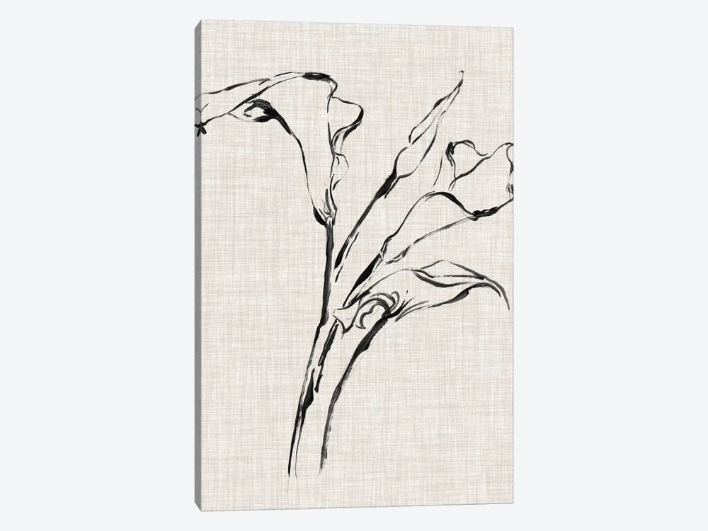 Floral Ink Study IV by Ethan Harper 1-piece Canvas Wall Art
