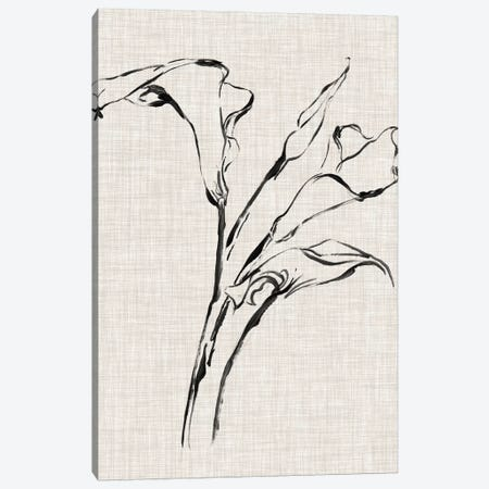 Floral Ink Study IV Canvas Print #EHA415} by Ethan Harper Canvas Art