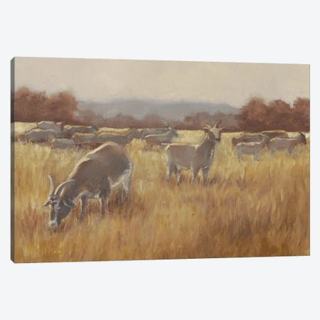Grazing Goats II Canvas Print #EHA417} by Ethan Harper Canvas Artwork