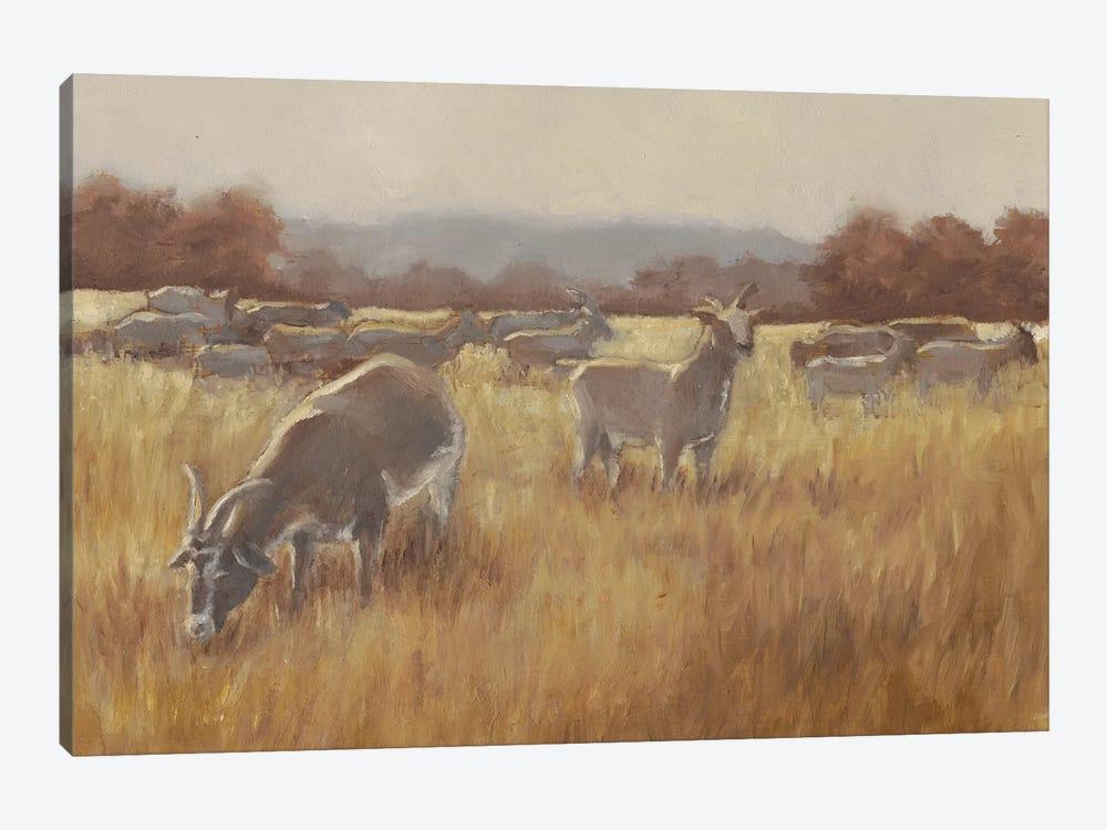 Grazing Goats II by Ethan Harper 1-piece Canvas Wall Art