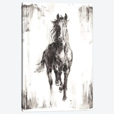 Rustic Black Stallion I Canvas Print #EHA437} by Ethan Harper Canvas Wall Art