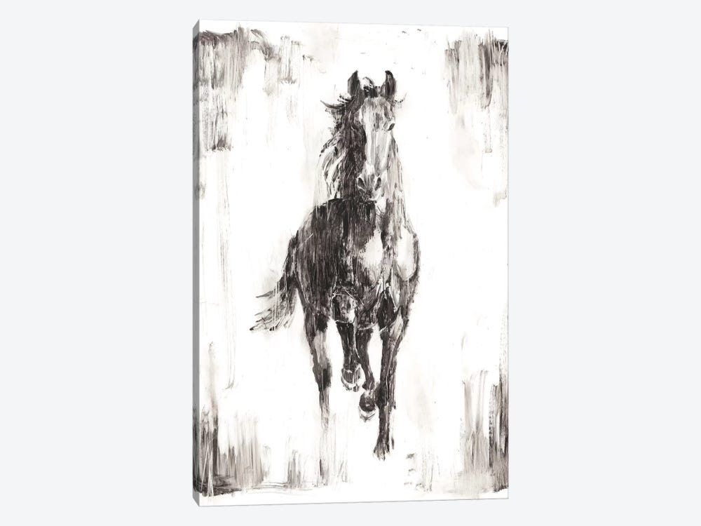 Rustic Black Stallion I by Ethan Harper 1-piece Canvas Art