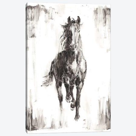 Rustic Black Stallion I Canvas Print #EHA437} by Ethan Harper Canvas Wall Art