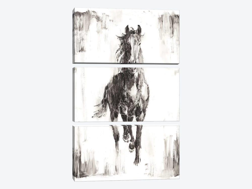 Rustic Black Stallion I by Ethan Harper 3-piece Canvas Artwork