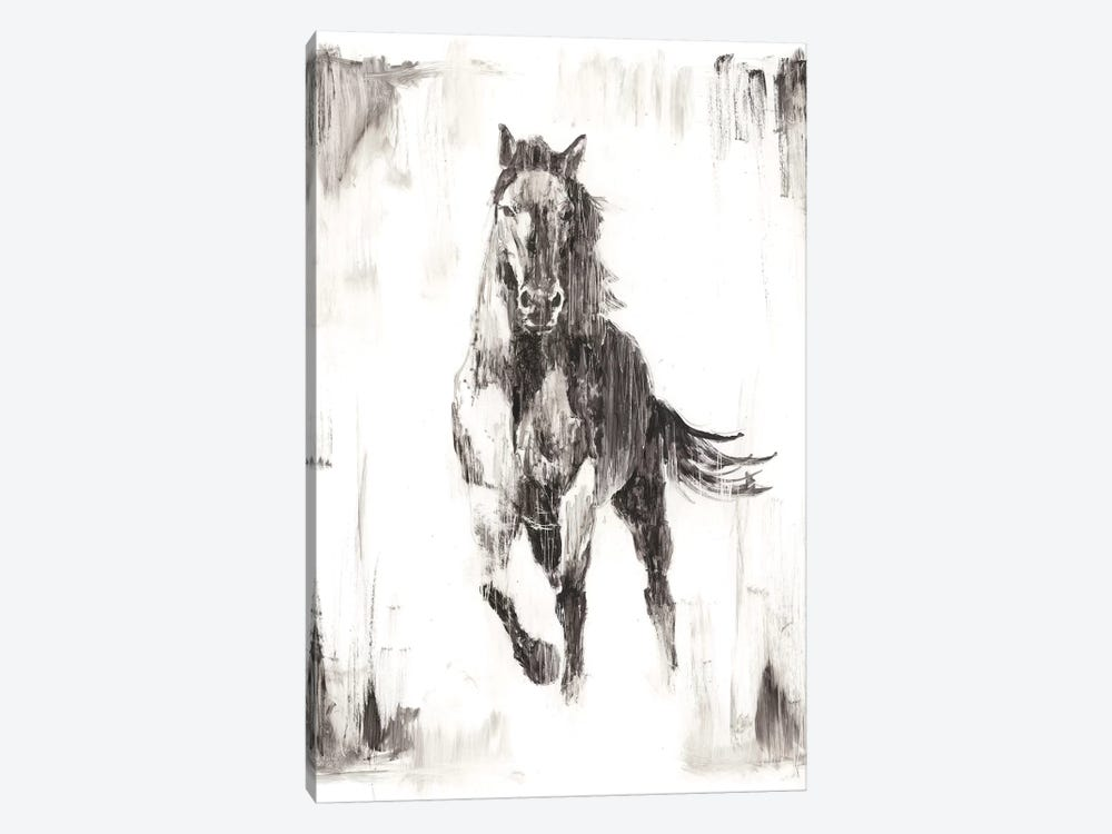 Rustic Black Stallion II by Ethan Harper 1-piece Canvas Print