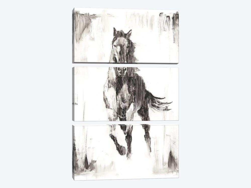 Rustic Black Stallion II by Ethan Harper 3-piece Art Print